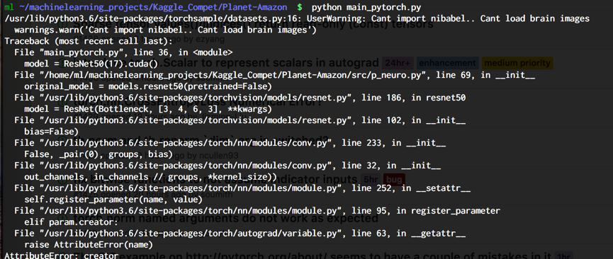 How to perform finetuning in Pytorch? - PyTorch Forums