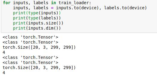 AttributeError: 'tuple' object has no attribute 'dim' error Transfer