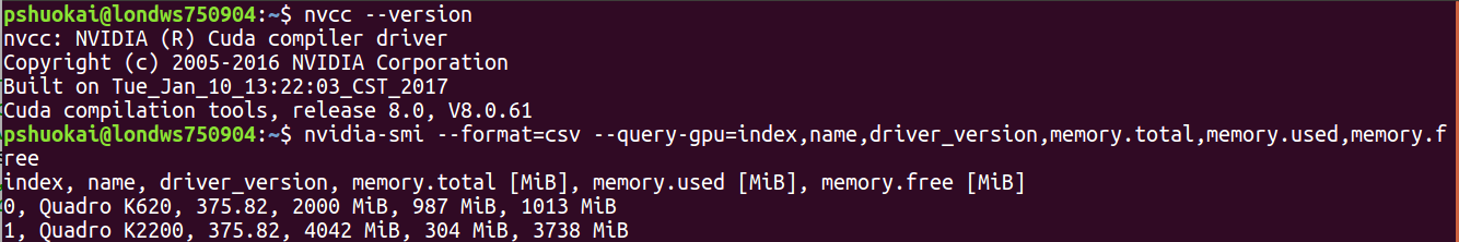 Why the two GPUs on my machine have the same ID, so that Pytorch can