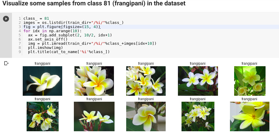 The generated images-labels from Dataloader not similar to