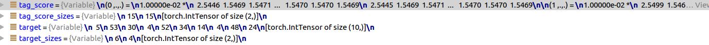 CTCLoss error using SeanNaren/warp-ctc? - vision - PyTorch Forums